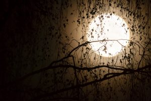 Księżyc jest pierwszym umarłym